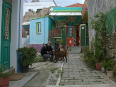 The friendly dogs of Koskinou adopted us as we explored their village