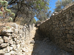 Stone walls lined several hiking paths leading out from Halki