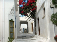 Bougainvillea flowers are a popular choice in Lefkes...these flowers are in bloom everywhere