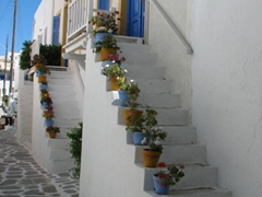 Pretty flower pots lined up narrow staircases; Naoussa