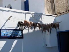 Dried octopus hanging in a row; Naoussa port side restaurant