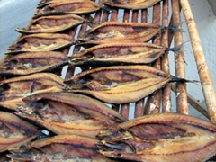 Dried fish and octopus by the waterfront helps steer us in the direction of a seafood restaurant; Parikia