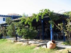 Garden side view of another Livadakia beach taverna