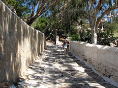 We decided to walk up this shaded 1.2 km footpath leading from Ormos to Hora