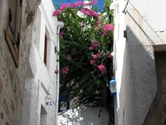 Ano Syros alleyway