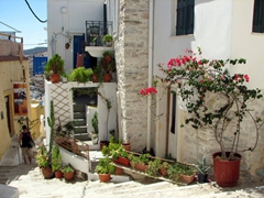 Ano Syros is full of pretty houses with potted plants