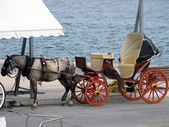 A horse carriage waits patiently for passengers near the ferry quay