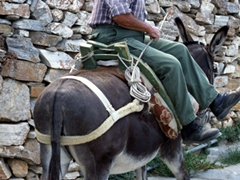 Photo of a Sifnian riding his donkey on the streets of Apollonia