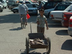 Boys with wheelbarrows hustle to transport market goods for shoppers; Khujand Bazaar