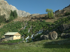A serene setting in the Fann Mountains (this garden is watered by glacial runoff)
