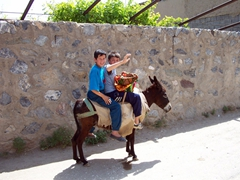 Local boys on donkey wave in greeting, Samarkand suburbs