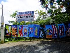 Souvenirs for sale; El Yunque National Park