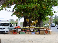 Fresh fruit for sale; Rincon