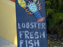 Fresh seafood is readily available on Vieques