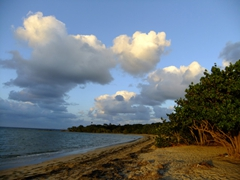 A beach on the northern side of Vieques