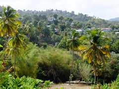 Typical scenery along the drive down the west coast of St Lucia