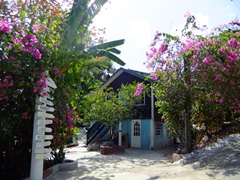 Bungalows at JJ's Paradise Resort; Marigot Bay
