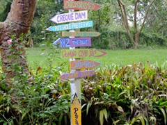 Colorful signpost in the middle of St Croix's rainforest