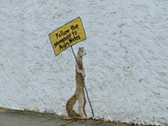 Catchy sign gets our attention; Christiansted