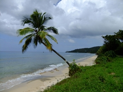 Lots of pretty beaches to be found on St Croix