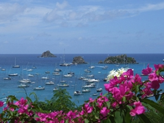Picture perfect St Bart's