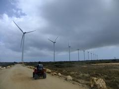 Michael driving past Aruba's wind turbine project