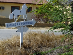Horseback riding is a popular tourist attraction on Aruba...here is a sign for one of the ranches we passed by