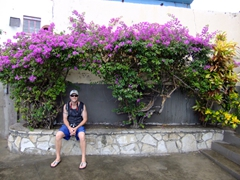 Robby sitting beneath pretty bougainvillea bushes