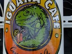 Sticker for the Iguana Cafe; Curaçao