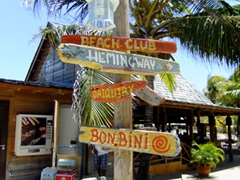 Kon Tiki beach signs