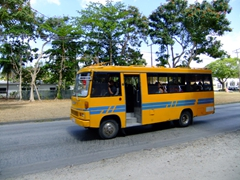 The local buses are a great (and cheap) way to explore Barbados