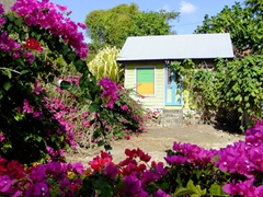 Quaint Barbados cottage