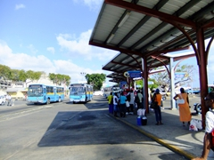 The Bridgetown bus stop takes you anywhere around the island you need to be, just ask the friendly locals to point out the right bus