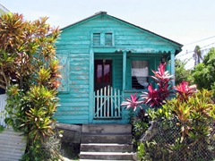 A weather beaten turquoise shack catches our eye in the Antiguan countryside