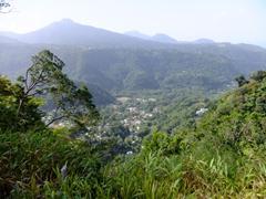 View of Dominica's interior