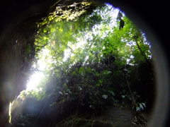 """The expression """"Titou Gorge"""" is a Creole (Patois) expression, literally meaning """"small throat hole""""...here is a shot looking up above us"""