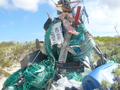 A mountain of clutter; Shoal Bay East