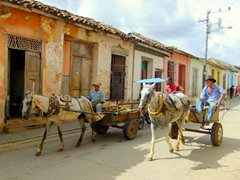 Motorized traffic is banned in many sections of Trinidad's cobble stoned streets, making horse drawn carts a popular alternative