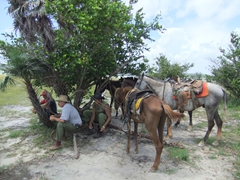 Our guides and horses take a break while we prepare to cool off in a nearby lake; Vinales