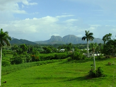 Gorgeous green scenery in Cuba's northwest