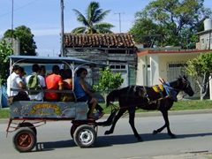 Horse drawn carts are a common mode of transport in Cienfuegos