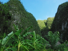 Awesome limestone mogotes dominate the landscape in Vinales