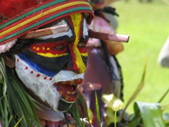 Some of the costumes worn by the various tribes at the Goroka festival were extremely colorful and eye catching