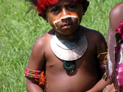 One of the younger members of the Jail-bird tribe