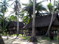 Typical village along the Sepik area