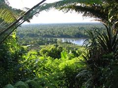 Great view of the river from Karawari lodge