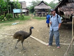 Robby with a tame cassowary