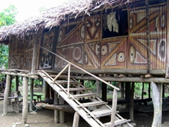 Simple thatch house, Sepik River