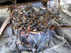 Fish cooking over a fire; Sepik River village