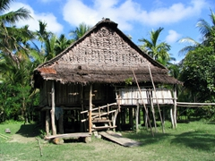 Typical dwelling along the Sepik River